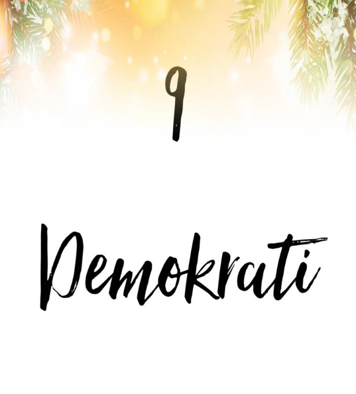 9. Demokrati