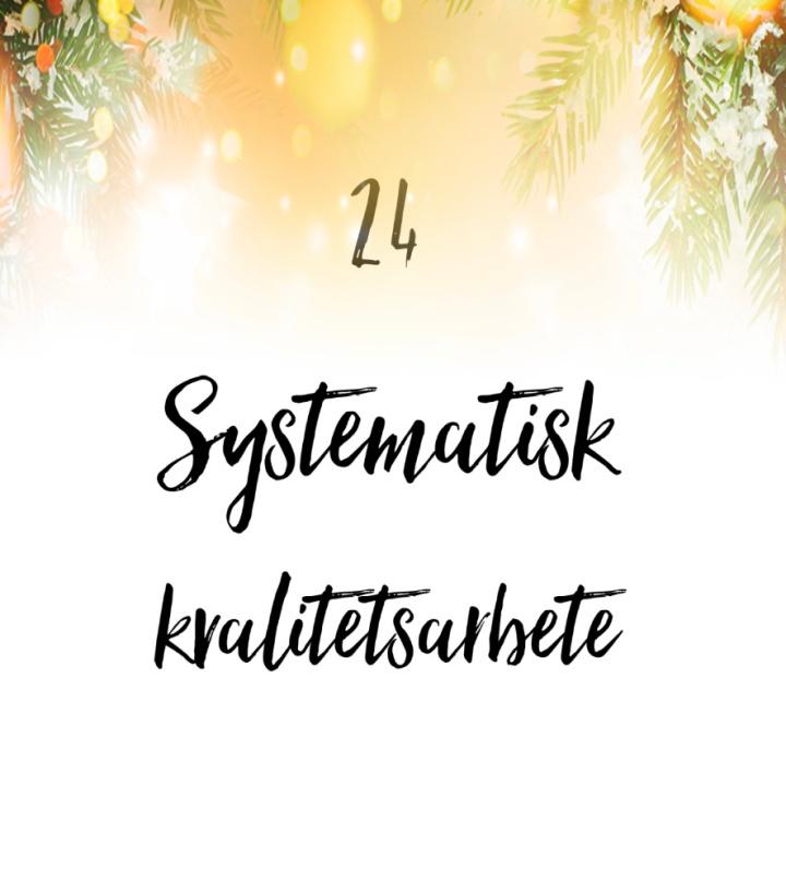24. Systematiskt kvalitetsarbete